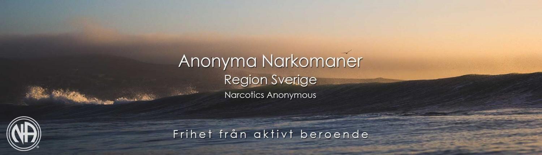Anonyma Narkomaner Sverige | Na Sverige